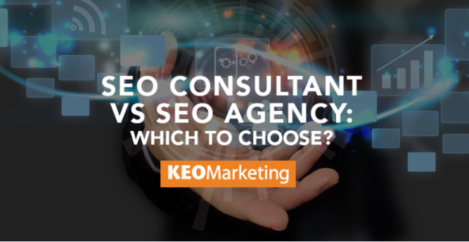 SEO Consultant vs. SEO Agency: Which to Choose?
