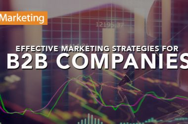 Effective Marketing Strategies for B2B Companies