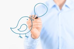 The Twitter bird drawn on a board.